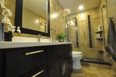 Lovely bathroom remodeling idea for smaller Mission Viejo bathroom