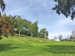 Wonderful El Dorado Park in Mission Viejo; El Dorado Neighborhood Mission Viejo