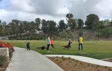 Family Fun at Oso Viejo Park Mission Viejo