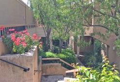 Baja Finisterra Homes on the Golf Course Mission Viejo