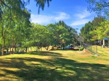 Gilleran Park in Mission Viejo   Youth Softball League   Sports Field