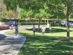 Kids Play at Florence Joyner Olympiad Park Mission Viejo