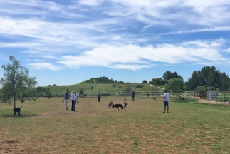 Mission Viejo Parks | La Paws Dog Park