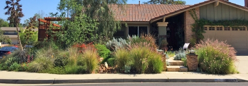 Mission Viejo Home Landscaping Ideas