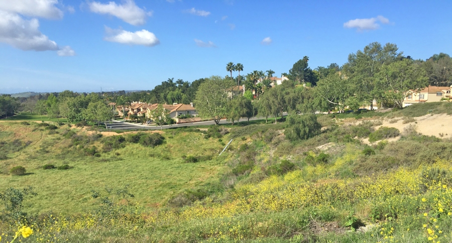 Homes in Mission Viejo South