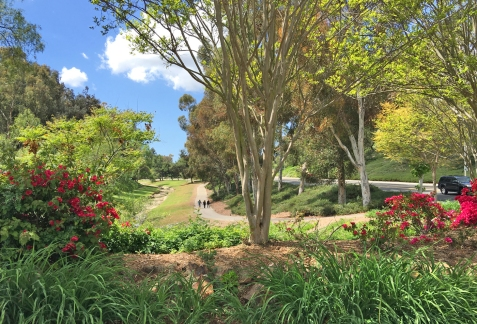 Oso Creek Trail and Jeronimo Open Space