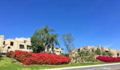Rainbow Ridge Condos in Mission Viejo North