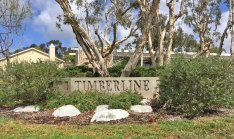 Timberline Homes and Park Mission Viejo North