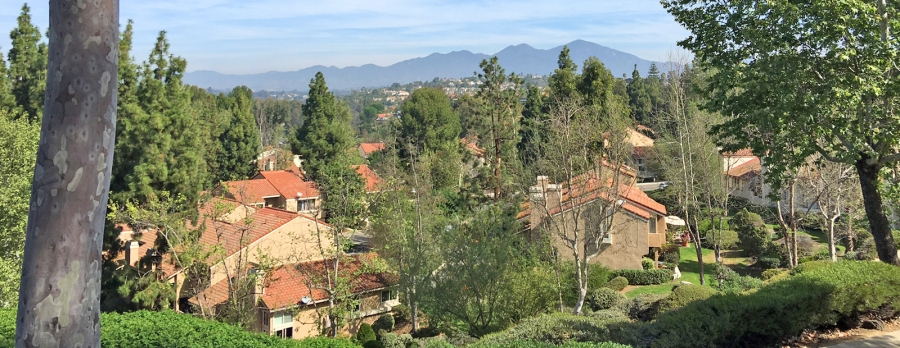 La Mancha Homes and Neighborhood in South Mission Viejo