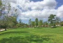 Aurora Park in Mission Viejo Central