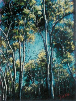 Pastel Painting of Eucalyptus Trees in Mission Viejo by Jackie Gibbins