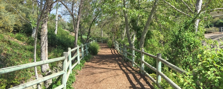Oso Creek Trail in Mission Viejo | Nature Trail