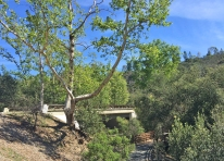 Wilderness Glen in Mission Viejo