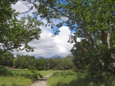 Trabuco Creek Trail O'Neill Park