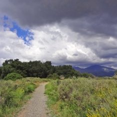 Arroyo Trabuco and Trail O'Neill Park