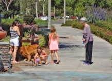 Dogs and Kids Walking Around Lake Mission Viejo