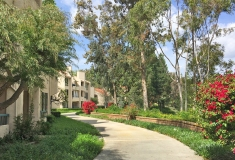 Search for Finisterra Homes for Sale in Mission Viejo