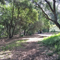 Historical Site Wilderness Glen Ranch Road Mission Viejo